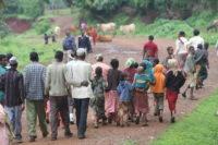 Ethiopia, Travis, Emily, Weeks, Nekempte, Oromo, Gumuz