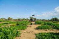 Turkana, Kenya, water, farms, Eric, Pitts