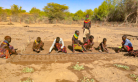 Turkana, Kenya, Gene, Morden, Haron, Jackson, farming, gardens, agriculture