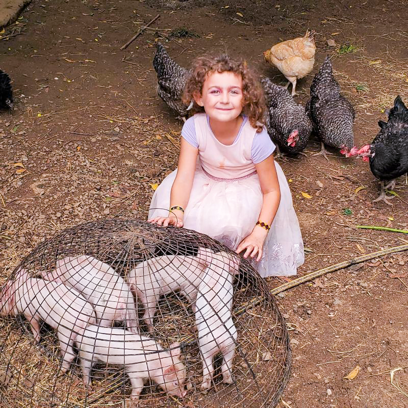Joel Williams, Rachel Williams, Turkana, Kenya, chickens, discipleship, farming