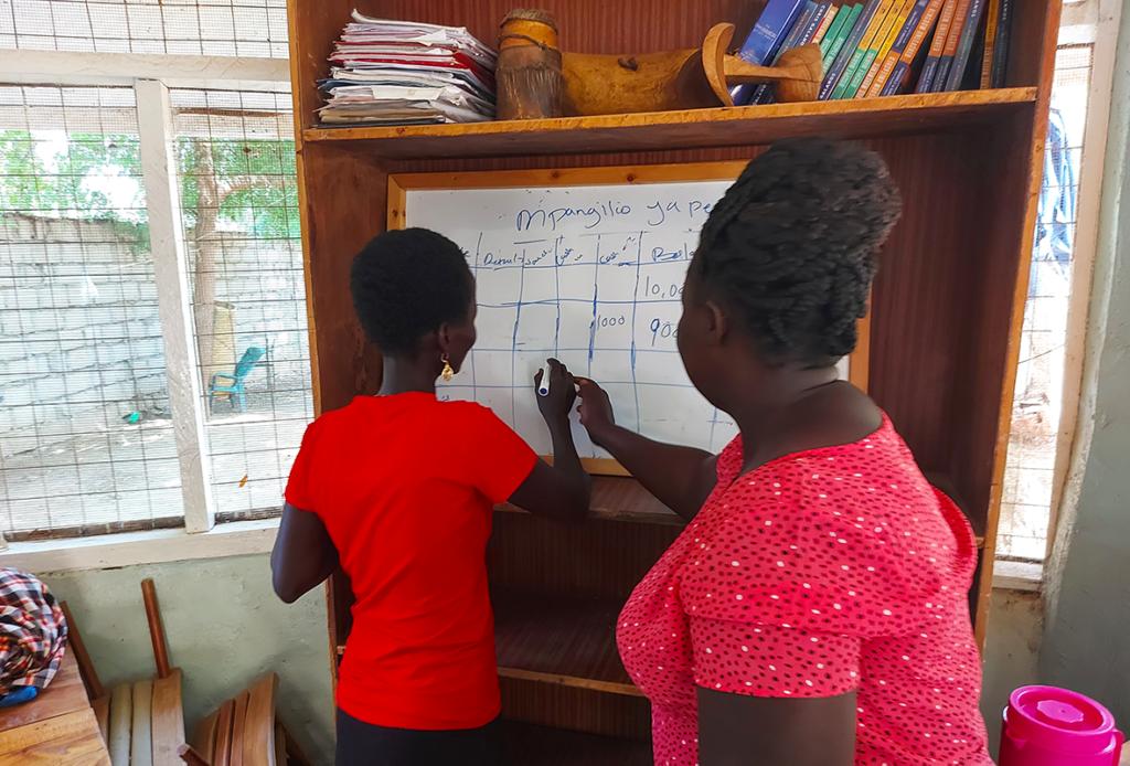 Rachel Williams, Cait Pitts, Turkana, Kenya, Days for Girls, business, training